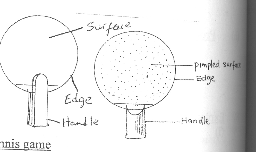 (a)(i) diagram of a bat - accuracy - dimension labelling - face -  edged/blade - handle